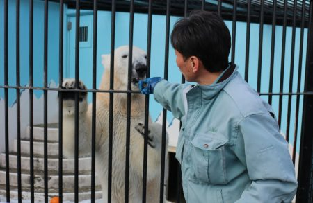 ドライフ 釧路市動物園 ミルク パクパクタイム