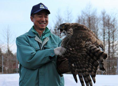 ドライフ 釧路市動物園 クマタカ フライトガイド