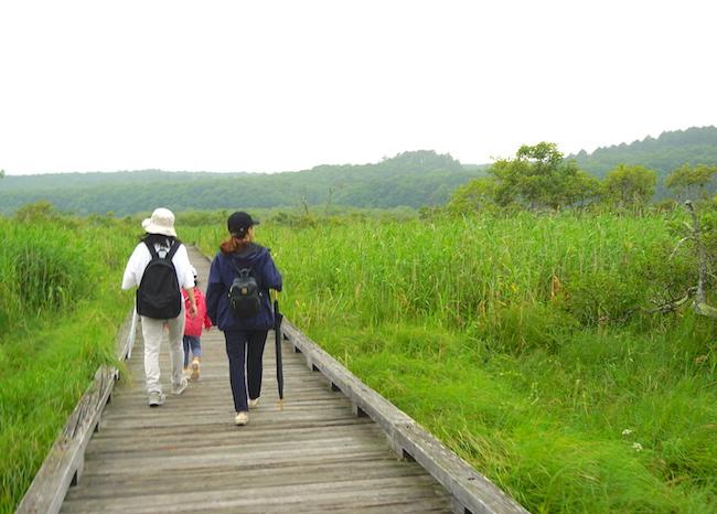鶴居村の『温根内木道』は子どもと楽しめる意外なお出かけスポットだった!木道散策編